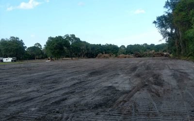 land clearing st. augustine fl